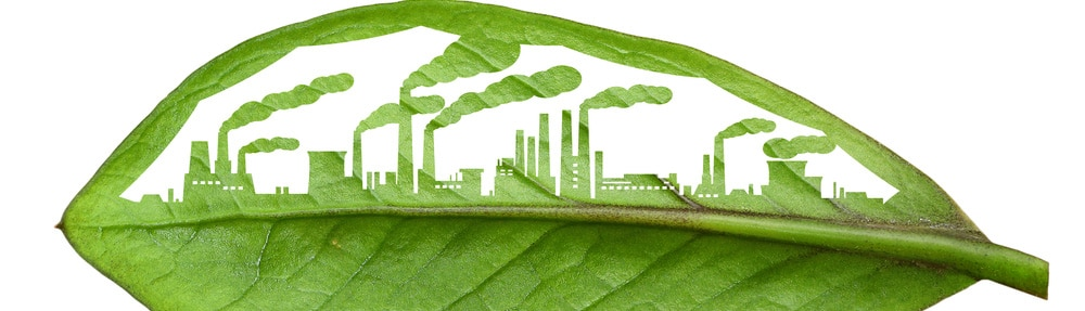 supply chain sustainability durable écologique such consulting article de fond